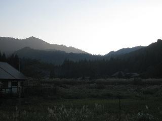 20110910,11,14生杉 096