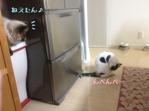 キッチンそらまめ1