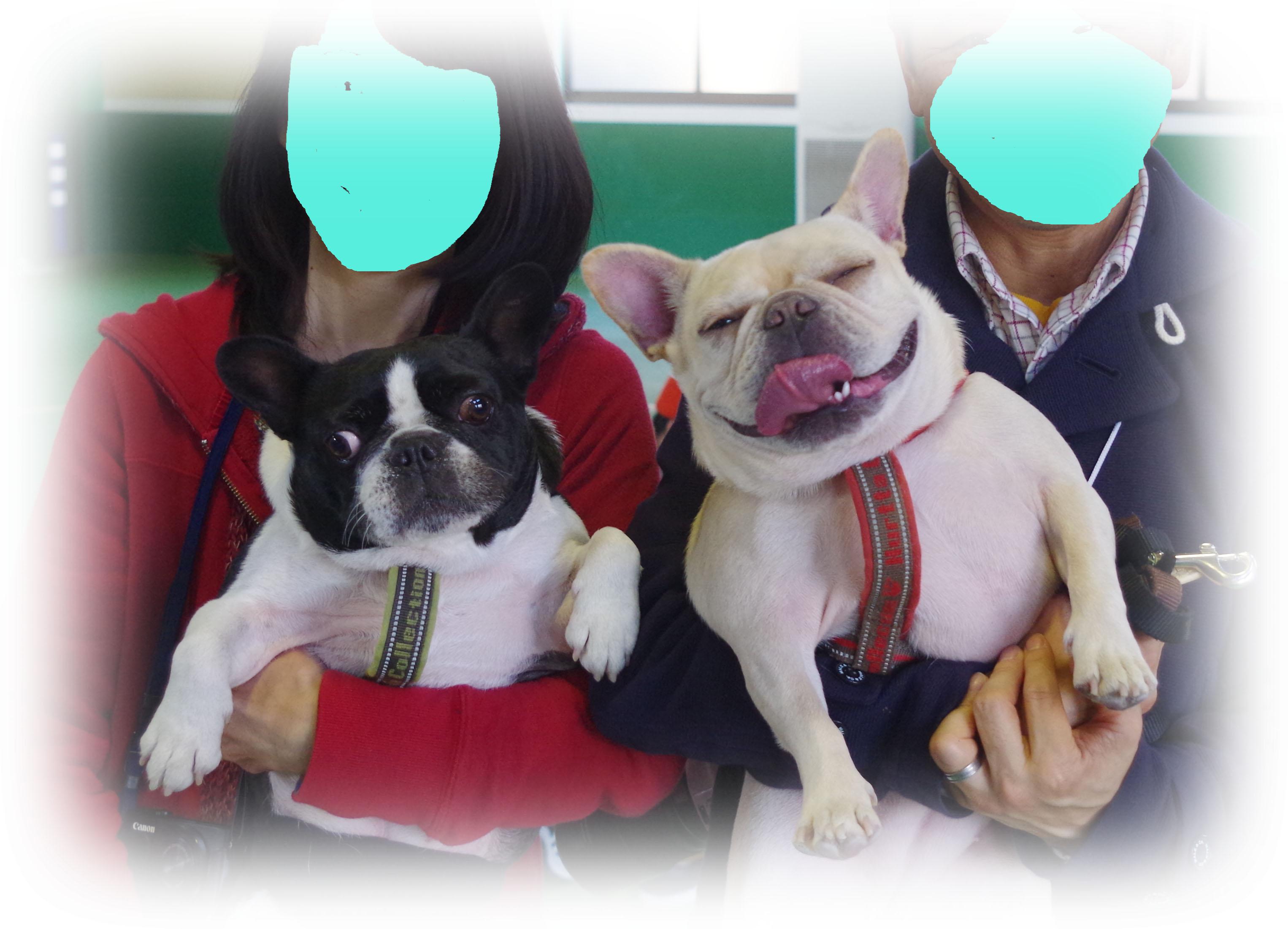 furu_uta01.jpg