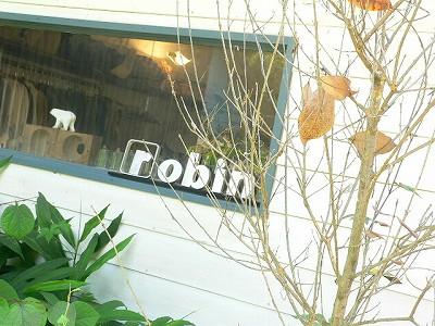 s-robin01.jpg