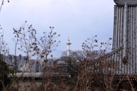 智積院から見た京都タワー_H25.12.10撮影