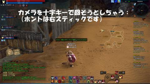 TERA_20120304_001855.jpg