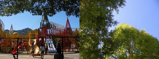 長良公園1