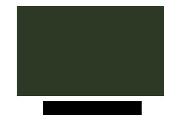 1717-olive-logo.png