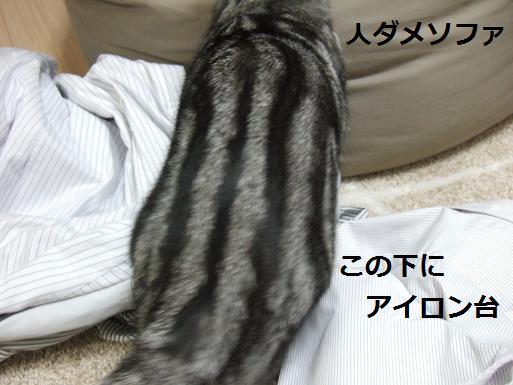 022-1121.jpg