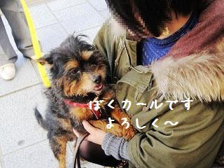 20111223(27) - コピー