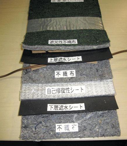 20101005-941885-1-L.jpg