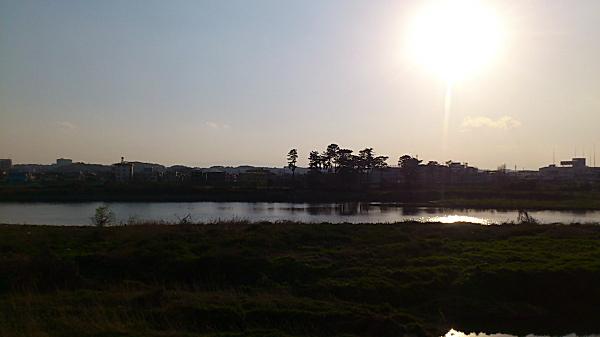 20120409tamagawa02.jpg
