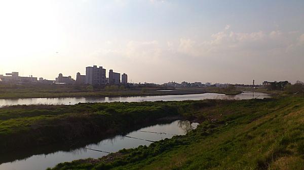20120409tamagawa05.jpg