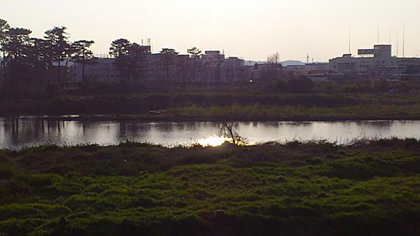 20120409tamagawa06.jpg