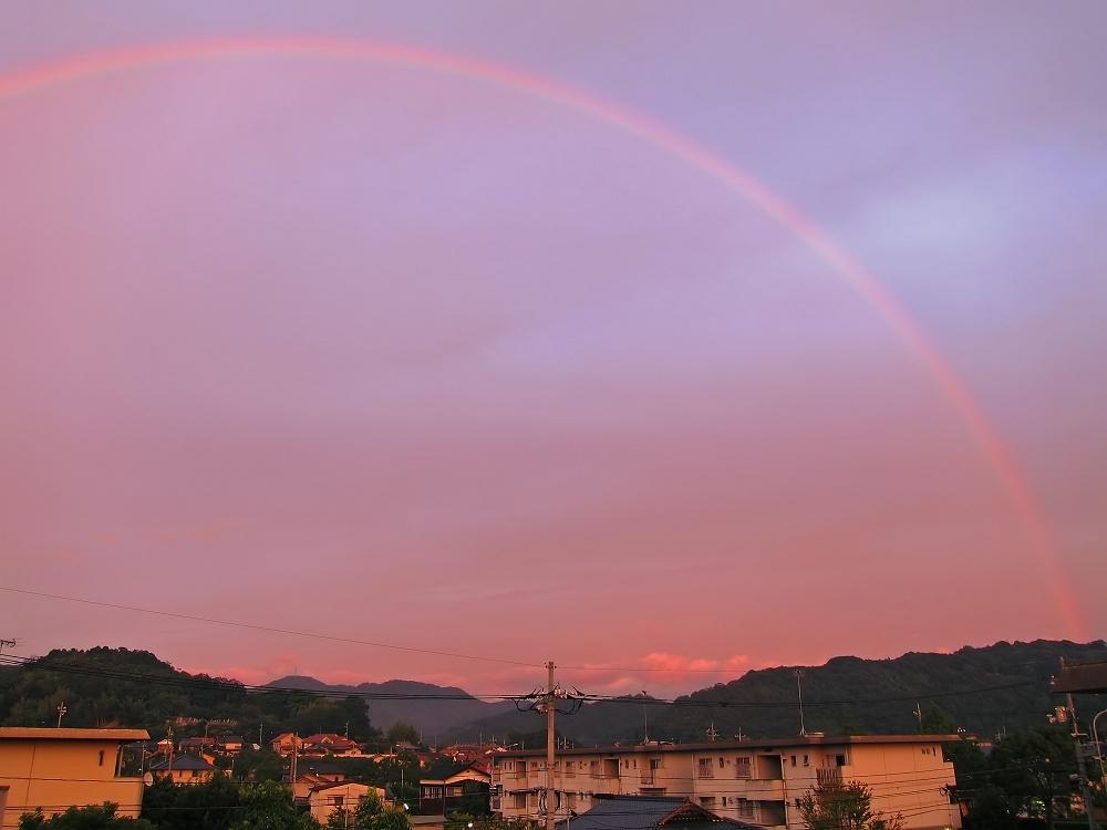 夕日に染まる虹