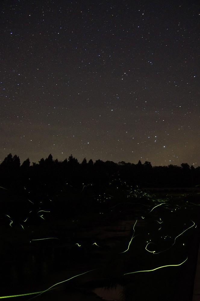 地上の星と天の星