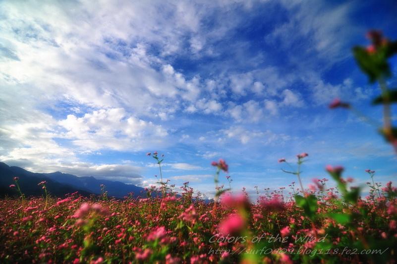 naka007_20111228063934.jpg