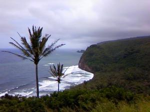hawaii縮小