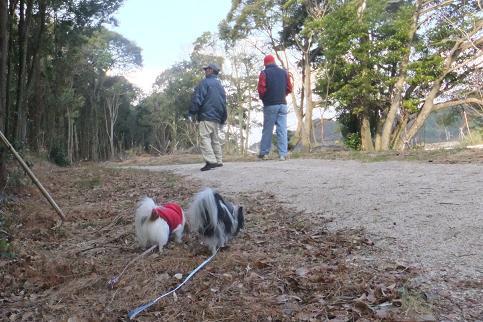2013.1.7東彼杵小林さん にわとり 077