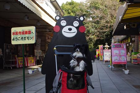 2012.3.10天草後半 090