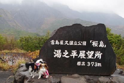 2012.3.17オフ会前日 022