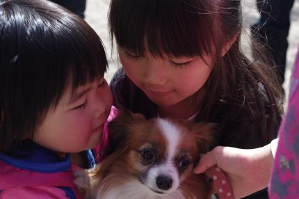 2012.4.1レオくん、あずきちゃん、大村公園 132