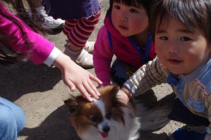 2012.4.1レオくん、あずきちゃん、大村公園 130