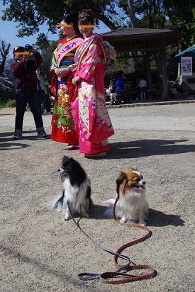 2012.4.1レオくん、あずきちゃん、大村公園 146