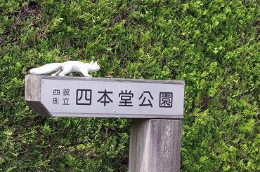 2012.4.8四本堂公園、西海橋 092
