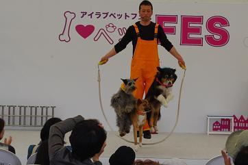 2012.4.15サーカス・障害物・撮影 006