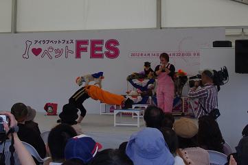 2012.4.15サーカス・障害物・撮影 049