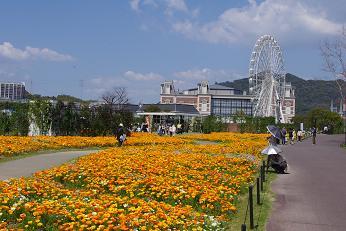 2012.4.15お花編 001