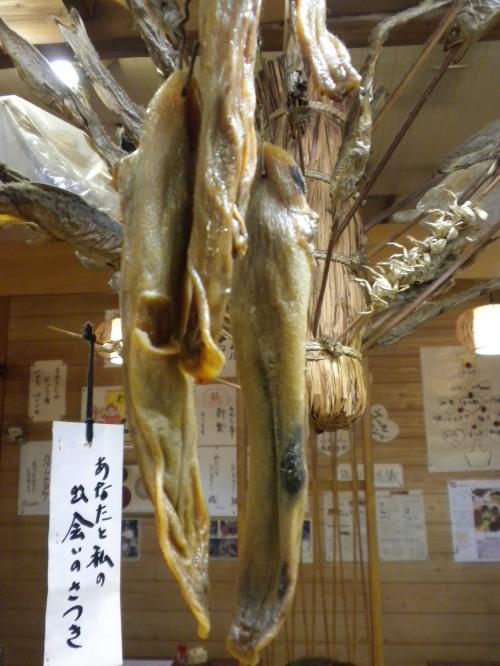 satsukikumatan_convert_20120131192117.jpg