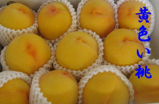 THE黄色い桃