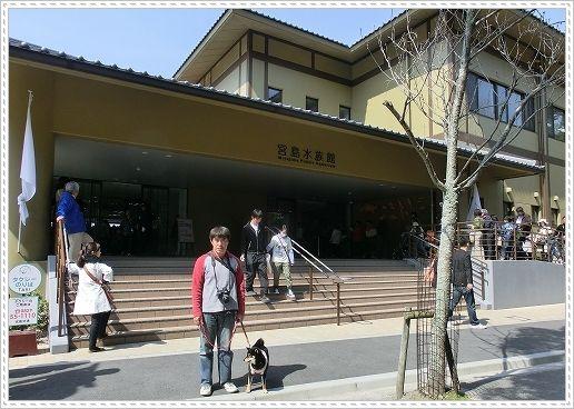 12.04.08 宮島 33