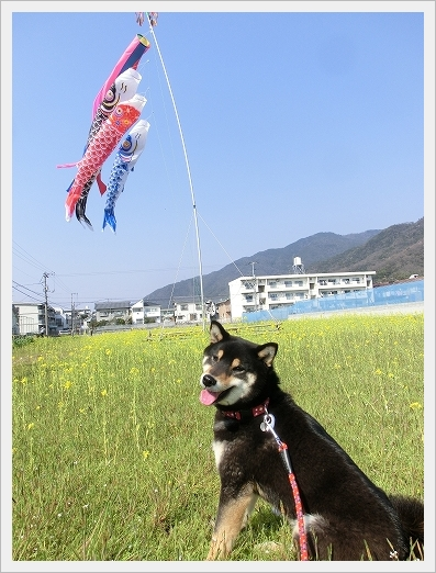 12.04.09 散歩 004
