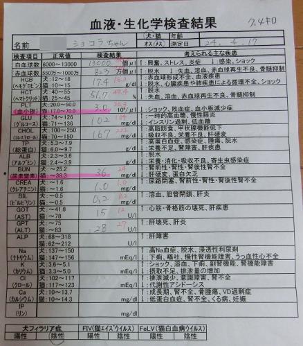 12.04.17 血液検査 003