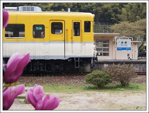 12.04.21 安野 003