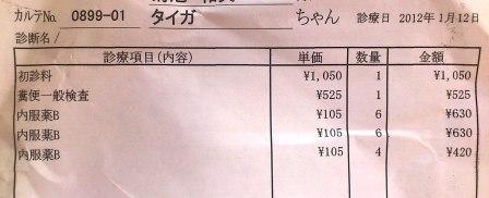 DSC_3194web用(2012年1月12日)
