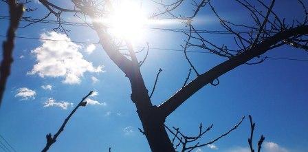 DSC_4239web用(2012年2月2日)
