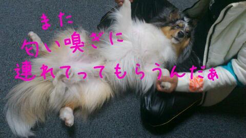 blog-2012-4-19.jpg