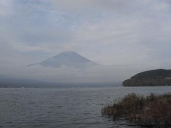 富士 山中