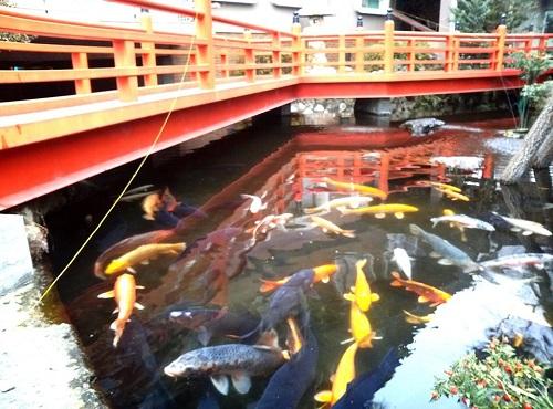 """今泉鎮座 八坂神社 """" 神明水 """" と """" 御神池 """" ②"""