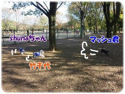 11_18+040_convert_20111118091508.jpg