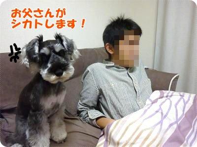 11_21+001_convert_20111123101925.jpg