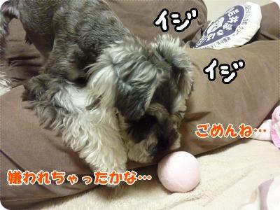 11_22+007_convert_20111123102416.jpg