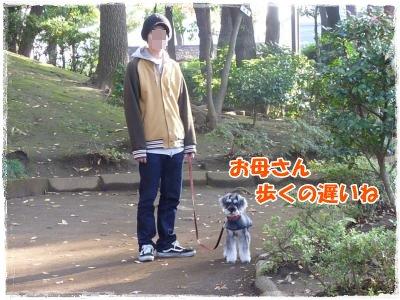 11_23+017_convert_20111124092739.jpg