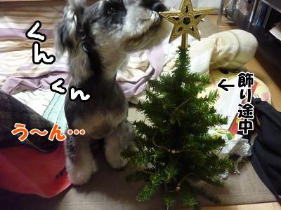 11_30+022_convert_20111130190911.jpg