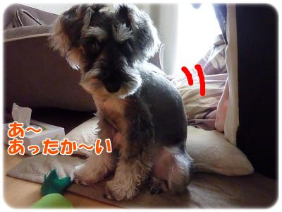 12_10+001_convert_20111210135219.jpg
