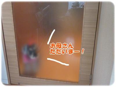 12_10+004_convert_20111210134925.jpg