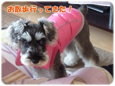 12_10+010_convert_20111210135147.jpg