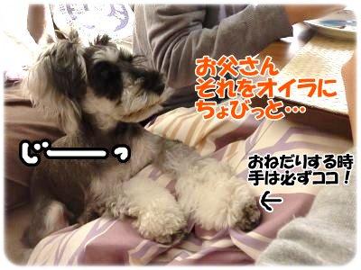 12_11+029_convert_20111213113638.jpg