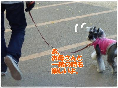 12_18+049_convert_20111218112538.jpg
