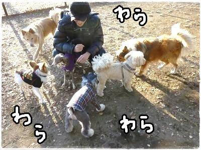 12_19+103_convert_20111219114522.jpg